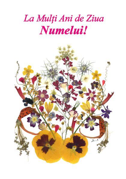 Set 10 Felicitari Oshi, La Multi Ani de ziua Numelui!, FMS 04b