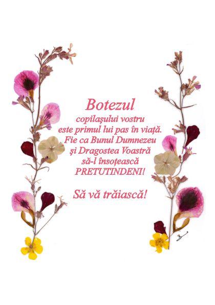 Set 10 Felicitari Oshi , FMS 07b, Botez, Botezul Copilasului Vostru...