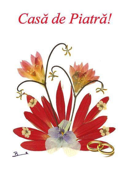Set 10 Felicitari Oshi , FMS 10b, Casa de Piatra!