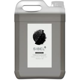 Sampon profesional concentrat (se dilueaza 1:1) pentru par normal/uscat/degradat 5000 ml