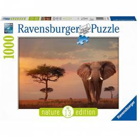 Puzzle elefant in masai mara, 1000 piese