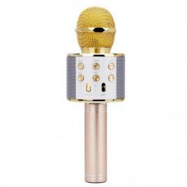 Microfon karaoke, wireless, boxa incorporata, egalizator, reincarcabil, auriu, rotosonic