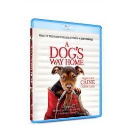 Drumul unui caine catre casa / A Dog's Way Home - BLU-RAY