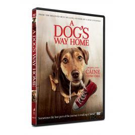 Drumul unui caine catre casa / A Dog's Way Home - DVD