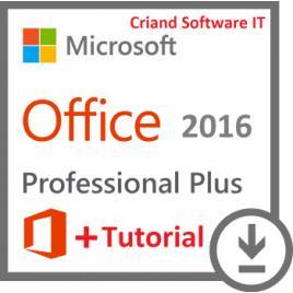 Microsoft Office Professional Plus 2016-Licenta Permanenta