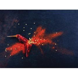 Panou sticla decorativa bucatarie protectie aragaz antistropire Print UV octopus imprimata Multicolor 700mmx600mm oct113-70x60