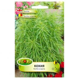 Seminte de kochia scoporia, 1,5 g
