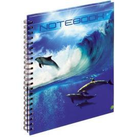 Registru a4 100 file, grand150-1235, perforatii, spira, cartonat, matematica