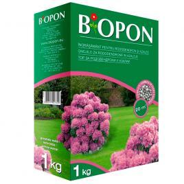 Ingrasamant pentru rododendroni si azalee 1 kg